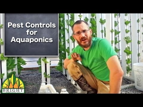 Pest Controls for Aquaponics