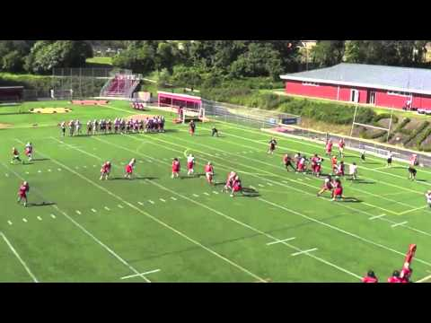 "Drew Jackson ""Cannon""  Seton Hill Quarterback 2014 Highlights"