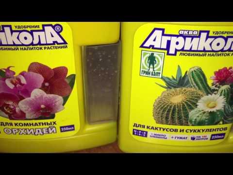 Удобрение для орхидей. Когда удобрять фаленопсис.