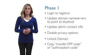 How do I transfer my domain name?