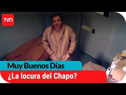 ¿Alucinaciones? Chapo Guzmán se estaría volviendo loco en prisión | Muy buenos días