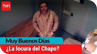 ¿Alucinaciones? Chapo Guzmán se estaría volviendo loco en prisión   Muy buenos días