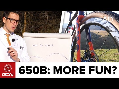 Smaller Wheels, More Fun? 650B VS 700C