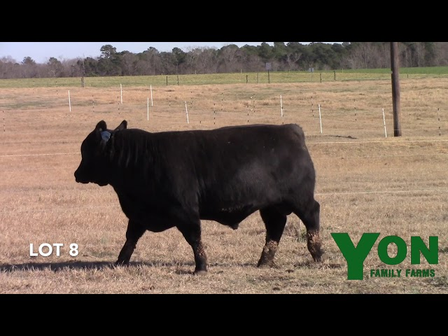 Yon Family Farms Lot 8