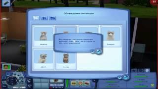 как сделать кота в симс 3