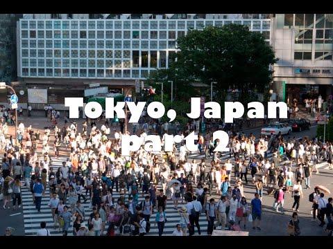Tokyo part 2 (Parks, Shibuya Crossing, Tsukiji Fish Market)