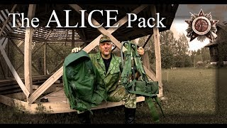 What You Failed To Notice On The ALICE Pack