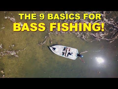 Bass Fishing Tips: 9 Basics All Anglers Need To Know | Bass Fishing