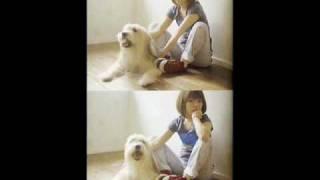 aikoが歌う - 「スワロウテイル バタフライ~あいのうた」 ラジオ音源で...