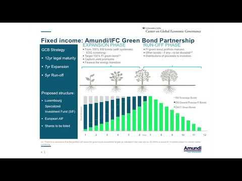 Investor Climate Stewardship: Green Bonds & Green Governance (Panel 2)