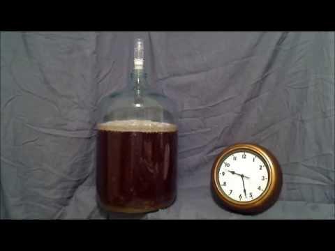 Beer Fermentation Time Lapse