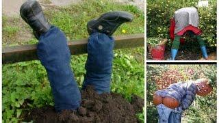 Самые креативные идеи чучела в ваш огород! Пугало огородное своими руками.