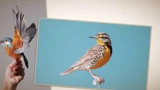 Реалистичные птицы из бумаги