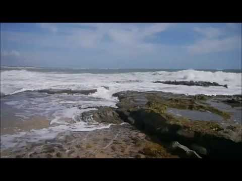 Pipa Beach Travel Video
