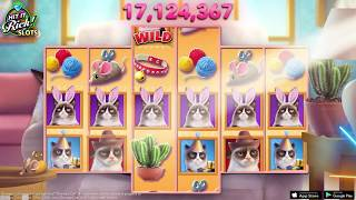 Lose with Grumpy Cat in Hit it Rich Slots by Zynga!