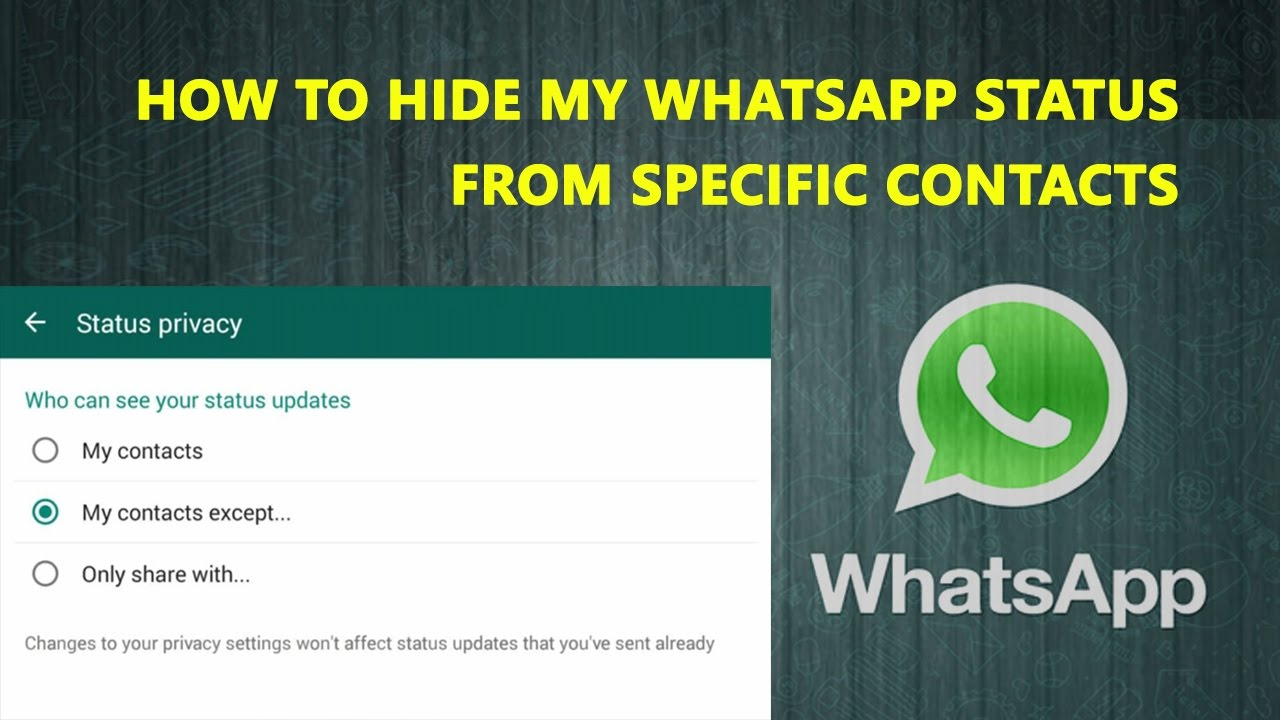 How To Hide My Whatsapp Status From Specific Contacts In Hindi Whatsapp New Features