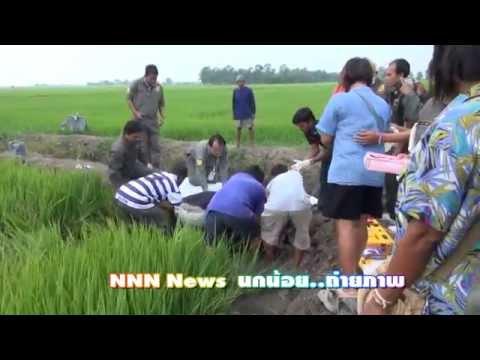NNN News ซ็อตหนูชาวนาตาย