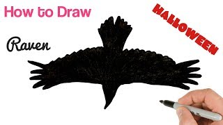 How to Draw Black Raven Flying for Halloween drawings