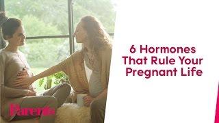 A Cheat Sheet to Pregnancy Hormones | Parents