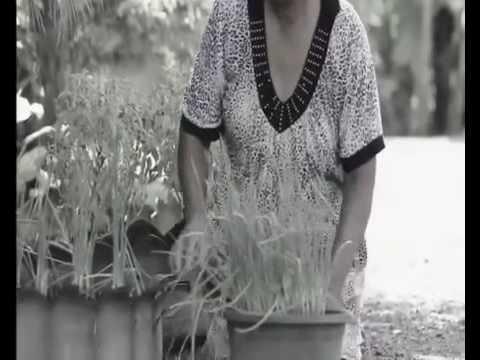 บก.ทท.(นทพ.) โดย นทพ. โครงการหมู่บ้านตัวอย่างตามรอยเท้าพ่อ ปี ๕๘ การพัฒนาด้านการเกษตร