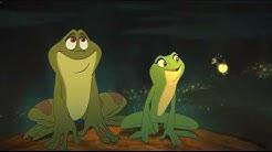 Glühwürmchen Küss Den Frosch