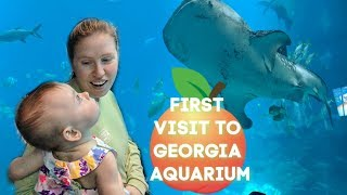 LARGEST AQUARIUM in the WORLD!!! 🐬