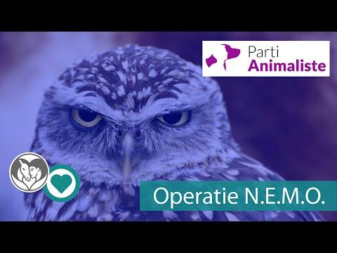 Operatie N.E.M.O.