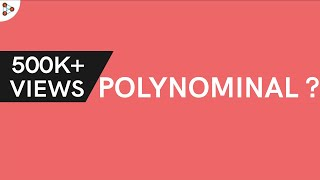 What is a Polynomial?