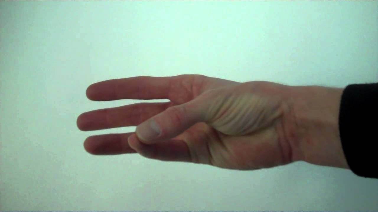 Opposition of thumb and fingers - YouTube
