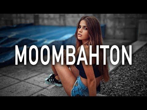 Moombahton Mix 2017 | Best of Moombahton 2017 | New Level