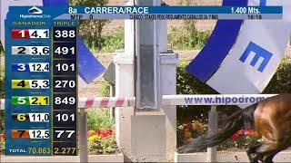 Vidéo de la course PMU PREMIO JAIME GARCIA-HUIDOBRO DOMINGUEZ