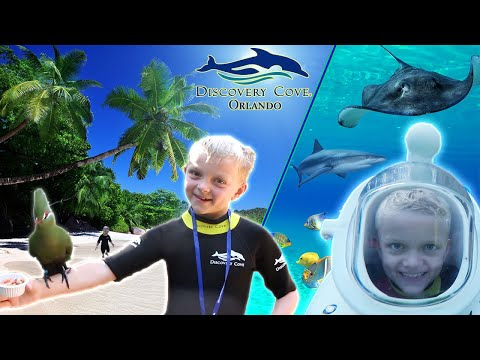DISCOVERY COVE ORLANDO | BEST FAMILY DAY EVER | DOLPHIN SWIM + SEA VENTURE | FULL EXPERIANCE | VLOG