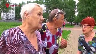 Выгул собак в Кирове