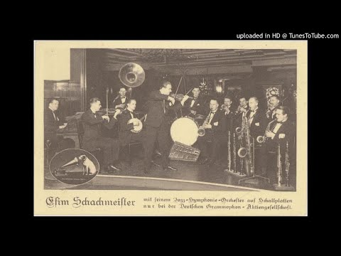 The Efim Schachmeister Dance Orchestra - Yes Sir Thats My Baby -  1926