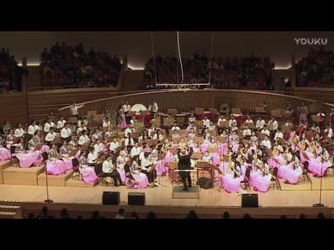 Kalinka—卡林卡 Shanghai Minhang Youth Chinese Traditional Orchestra