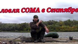 Ловля сома с берега осенью на червя на Дону видео Рыбалка 2021