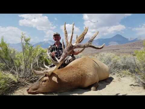 Archery And Rifle Tule Elk Hunt In California - Chuck Trover - MossBack