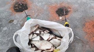 Рыбалка на леща, утянуло 2 удочки! Наловил много крупного подлещика на льду. Опасный лёд ОСТОРОЖНО