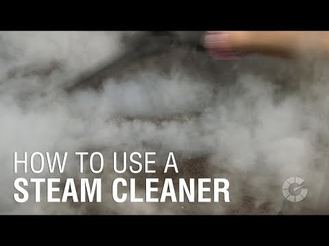 The 10 Best Steam Cleaners for Cars to Buy 2019 - Auto Quarterly