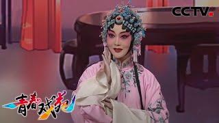 《青春戏苑》 20200421 京韵芬芳  CCTV戏曲