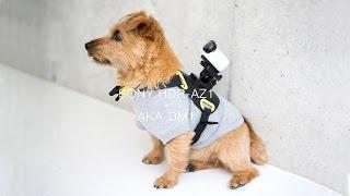 SONY HDR-AZ1 アクションカムミニのテスト撮影 #03 ドッグハーネスAKA-D...