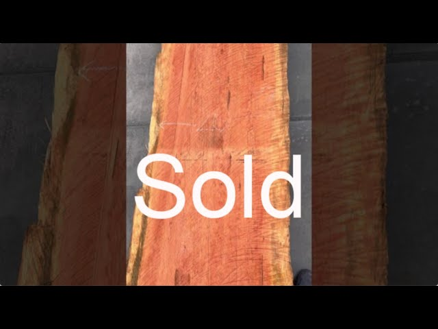Old Growth Redwood Slab #11