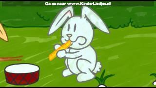 Kinderliedjes van vroeger - Groen Knollenland