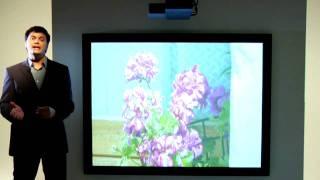 Sanyo PLC XL51 Projector - multimedia projectors
