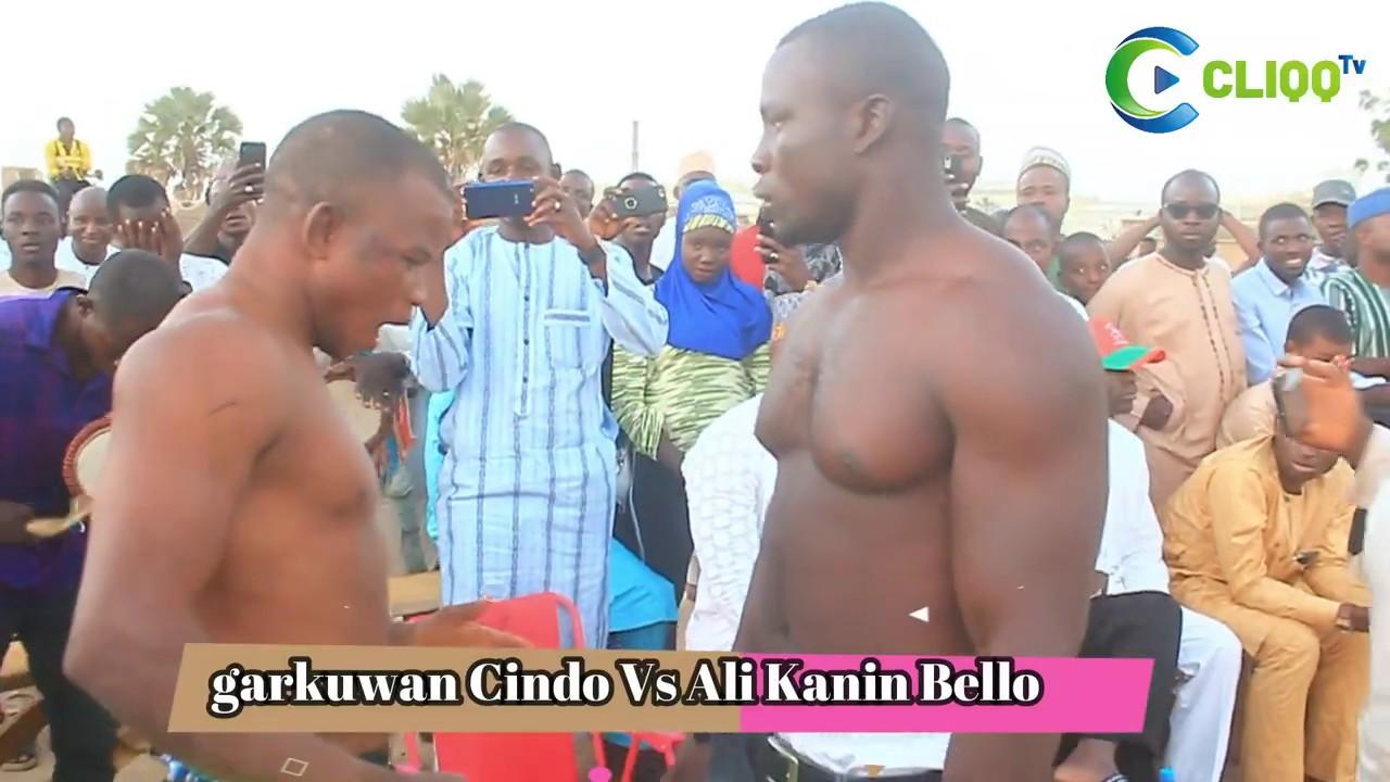 Download Damben Katsina | Yau Asabar Za ayi Dambe tsakanin Garkuwan Cindo da Ali Kanin Bello