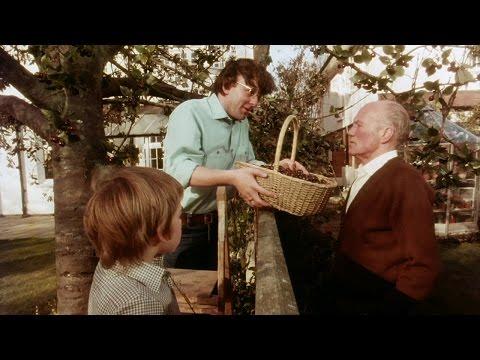 """Allianz Klassiker: """"Kirschbaum"""" – Erinnern Sie sich auch noch?"""