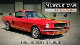 Muscle Car Of The Week Video Episode #134: 1966 Shelby GT350H