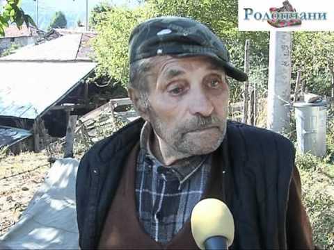 Ужас в община Баните! Мечки нападат...