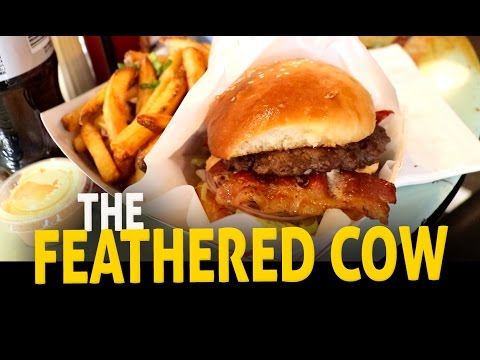 The Feathered Cow | It's Mississippi Cool