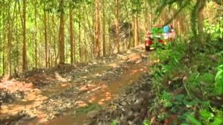1ª Etapa Do Rally Dos 5 Elementos -  Mitsubishi Motorsports Sudeste